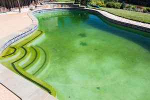 How to Clean a Green Pool and Other Pool Cleaning Tips